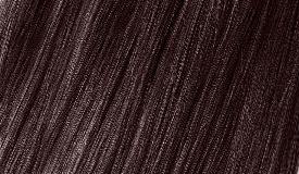 S6 DARK CHESTNUT / kasztanowy ciemny brąz